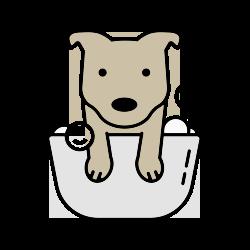 South Tulsa Grooming Co. - Dog Bath